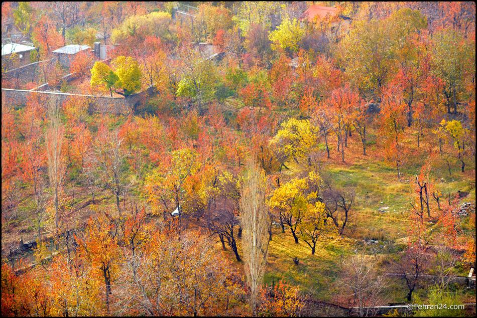 Lavasan, Afjeh village